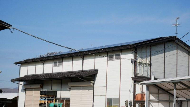 太陽光パネルを設置した倉庫